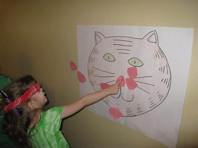 Pin the Nose