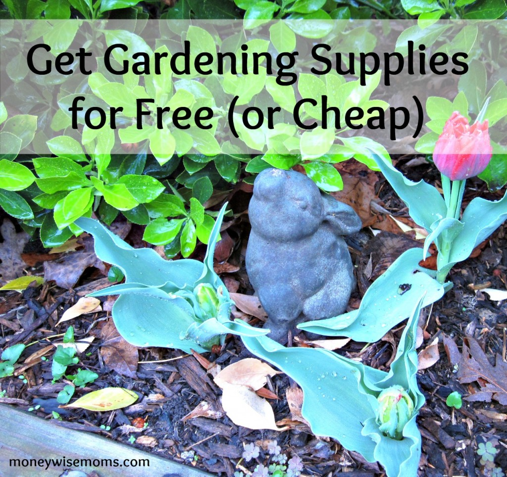 Get Gardening Supplies for Free or Cheap | MoneywiseMoms