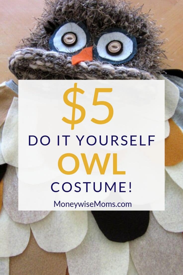 With a couple of hours and a couple of dollars, I made a cute $5 DIY Owl Costume for one of my 6-year-old daughters. Even better, this is no-sew!