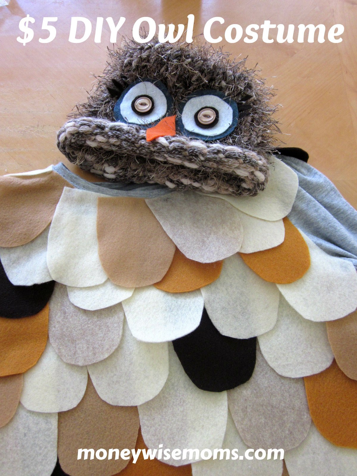 The Most Adorable $5 DIY Owl Costume