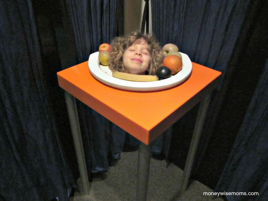 Still Life | Science Museum of Virginia #familyfun | MoneywiseMoms