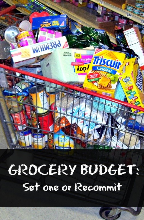 Grocery Budget (Set One or Recommit)   MoneywiseMoms