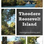 Theodore Roosevelt Island {Day Trip from DC}