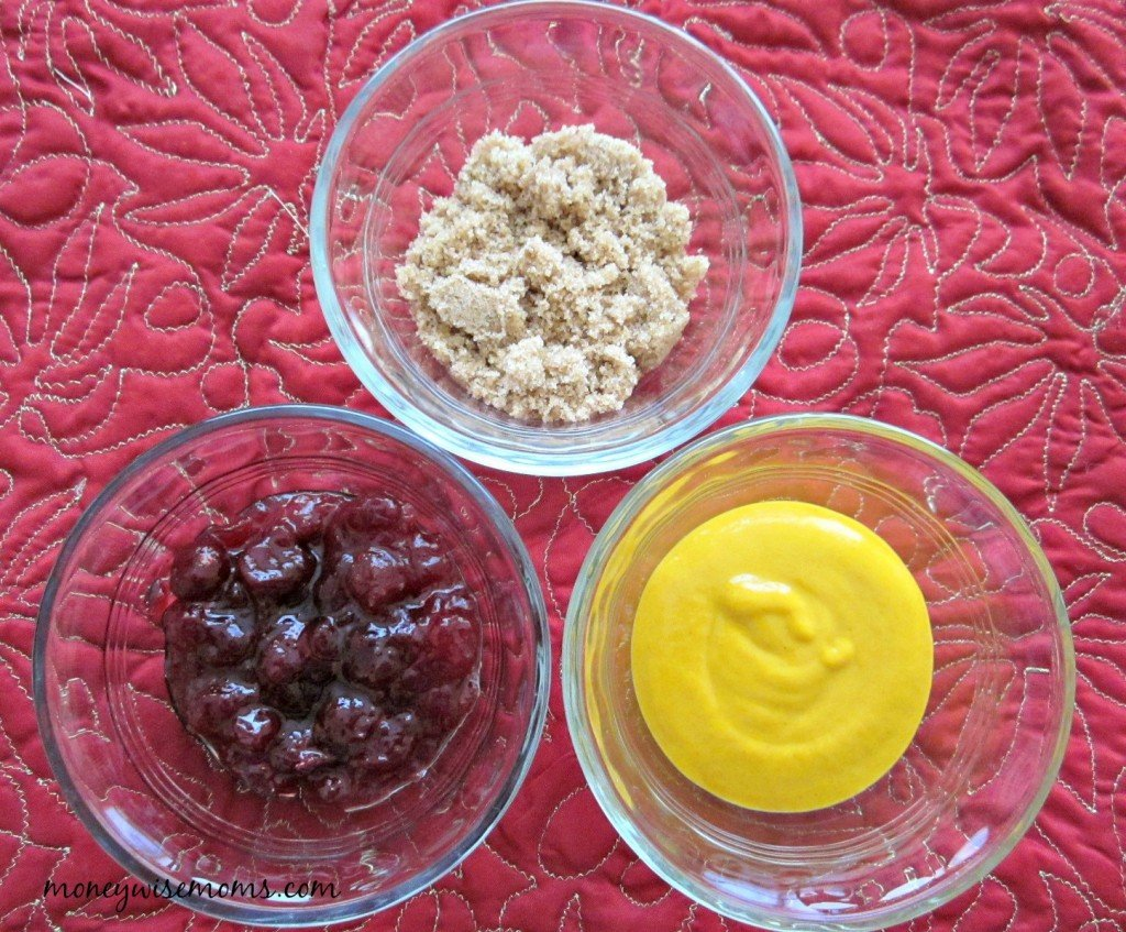 Cranberry Mustard Dip | Holiday Appetizers | MoneywiseMoms #PakTheParty #shop
