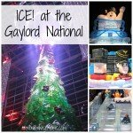 ICE! at the Gaylord National