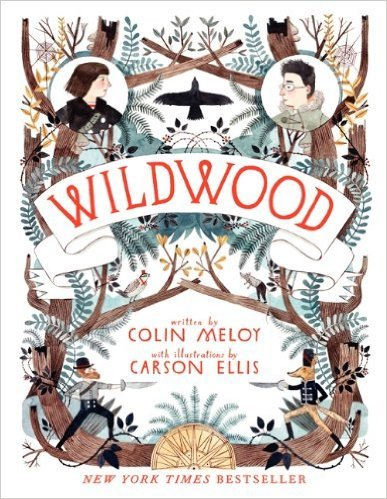 Wildwood by Colin Melot | Children's Fantasy Books with Strong Heroines