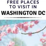 Free places to visit in DC with tweens
