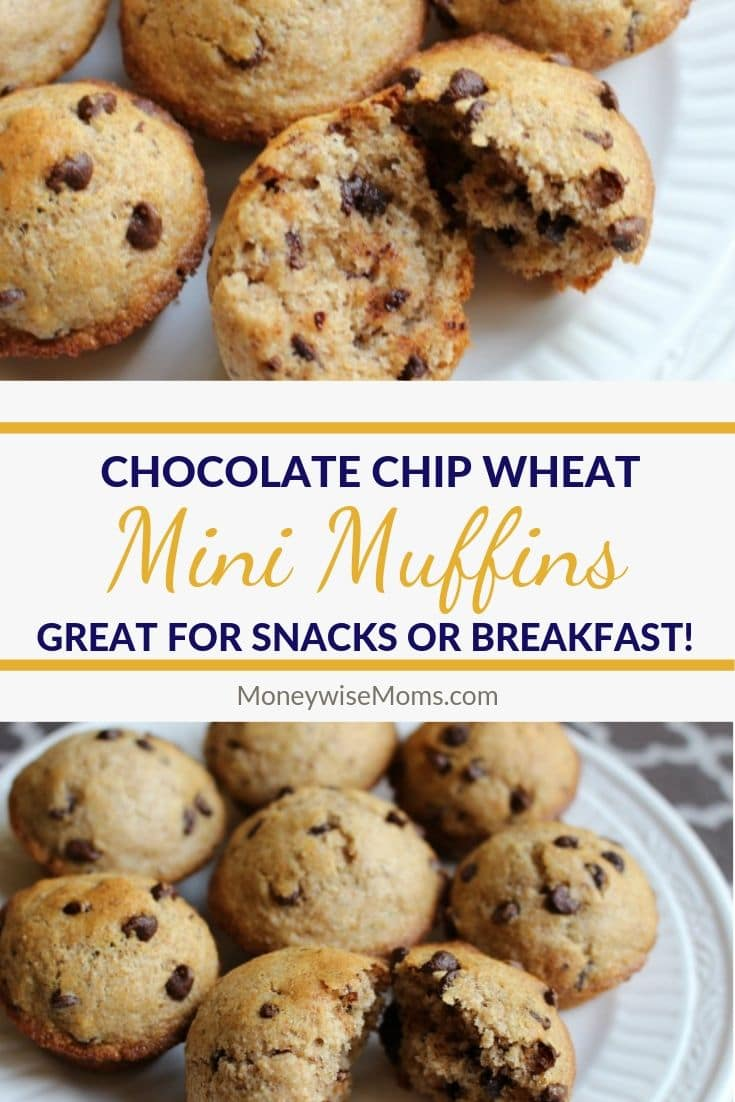 These Chocolate Chip Wheat Mini Muffins are one of my family's favorite healthy treats!