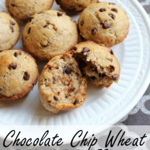 Chocolate Chip Wheat Mini Muffins - healthy treats for school lunchboxes