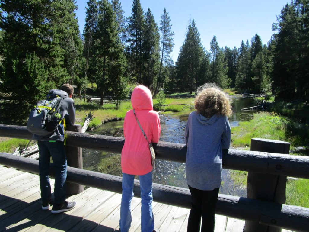 Hiking in Yellowstone National Park | Fee-Free Days at National Parks