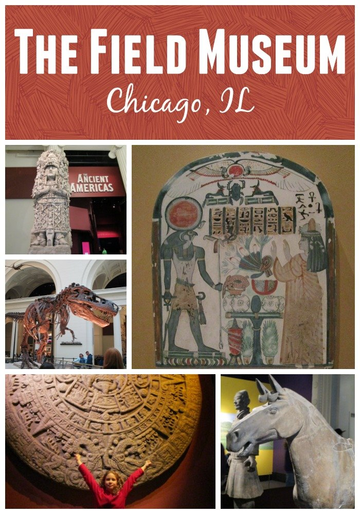 The Field Museum in Chicago Illinois   natural history museum family fun
