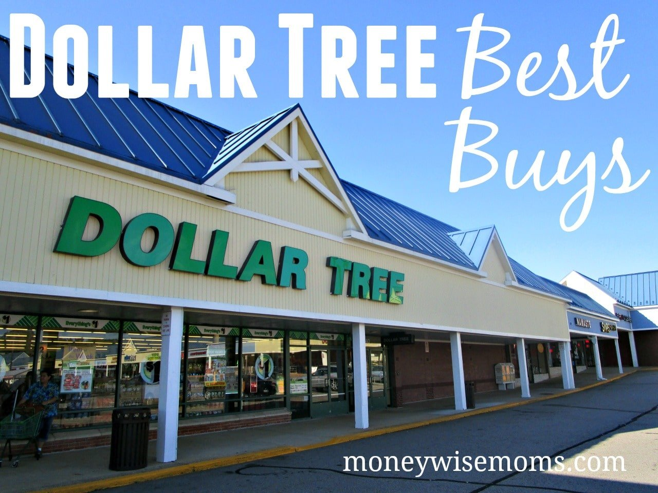 Dollar Tree Best Buys