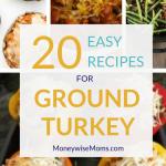 20 Easy Ground Turkey Recipes