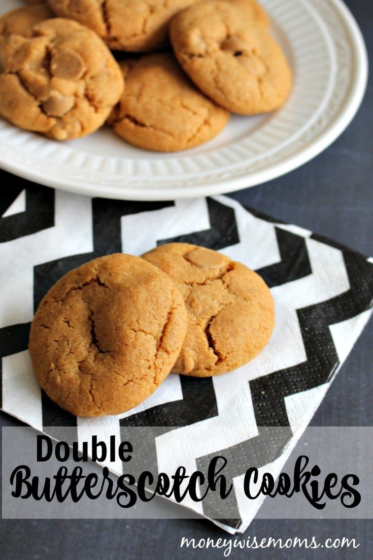 These Double Butterscotch Cookies are flavored with both pudding mix and chips for a creamy, chewy texture. Bake up a batch!