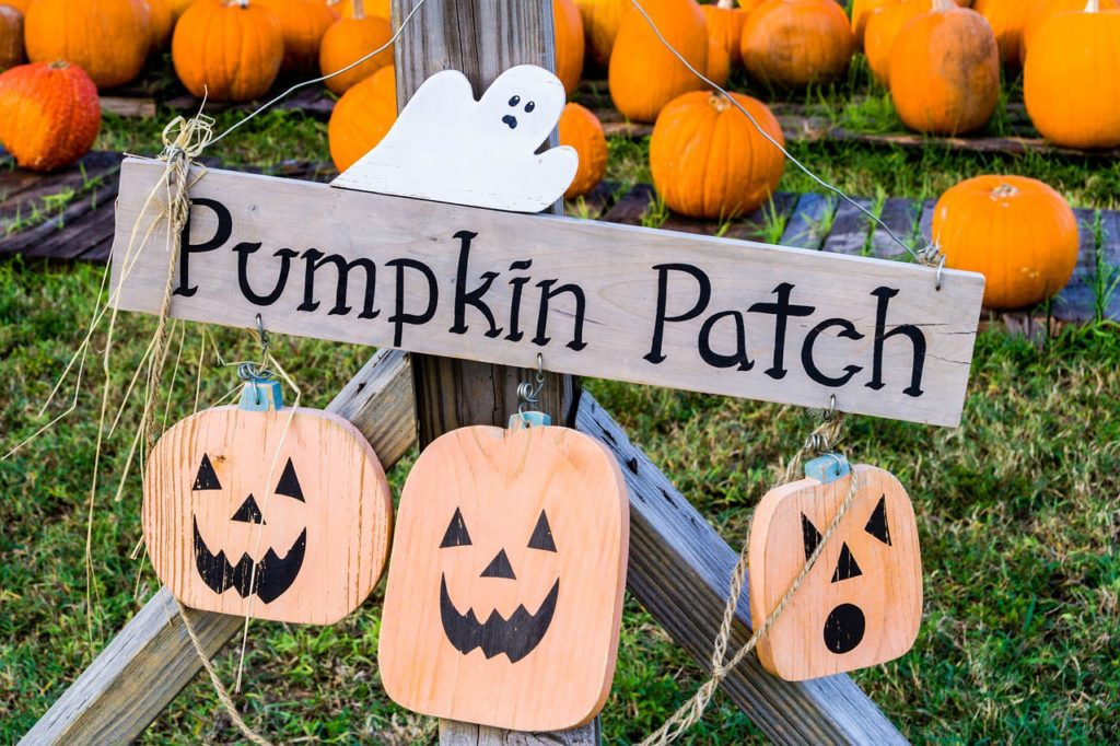 Pumpkin Patch - ways to save on fall family fun