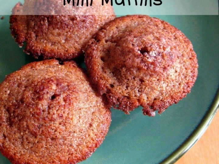 Whole Wheat Cinnamon Mini Muffins