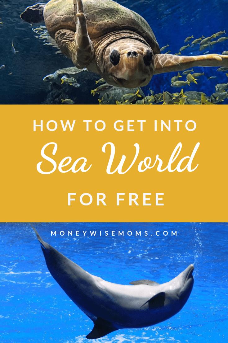 Free admission to Sea World