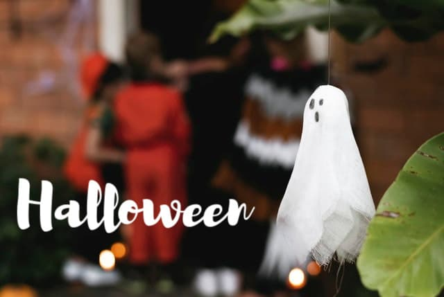 Halloween Posts from MoneywiseMoms | Holidays and Seasons