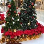 Christmas decor at mall