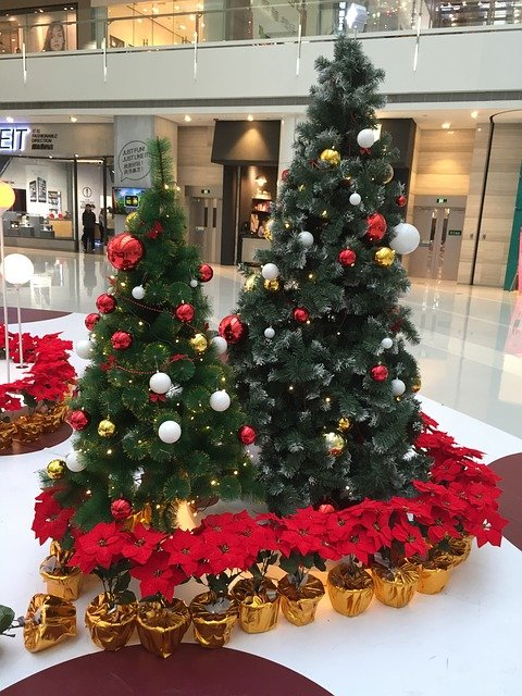 Christmas trees at shopping mall