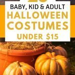 Costumes for the family under 15 dollars