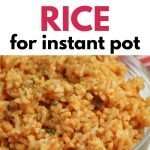 Mexican Rice in the instant pot - easy side dish recipe