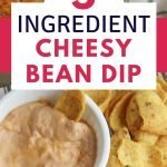5 ingredient cheese and bean dip