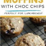 Banana Oatmeal Muffins with chocolate chips - easy lunchbox recipes