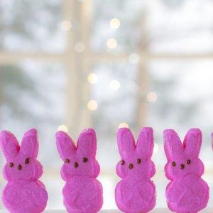 Cute Easter Treats