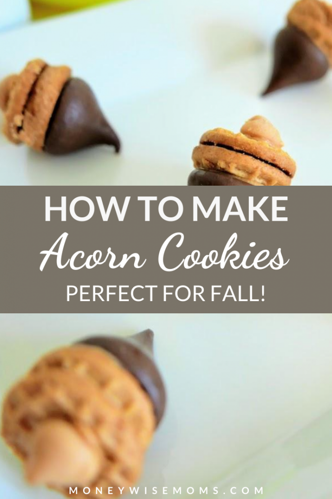 Fall is here and that means it's time for some perfectly on theme treats! These peanut butter chocolate acorn cookies are so fun to make and they're delicious!