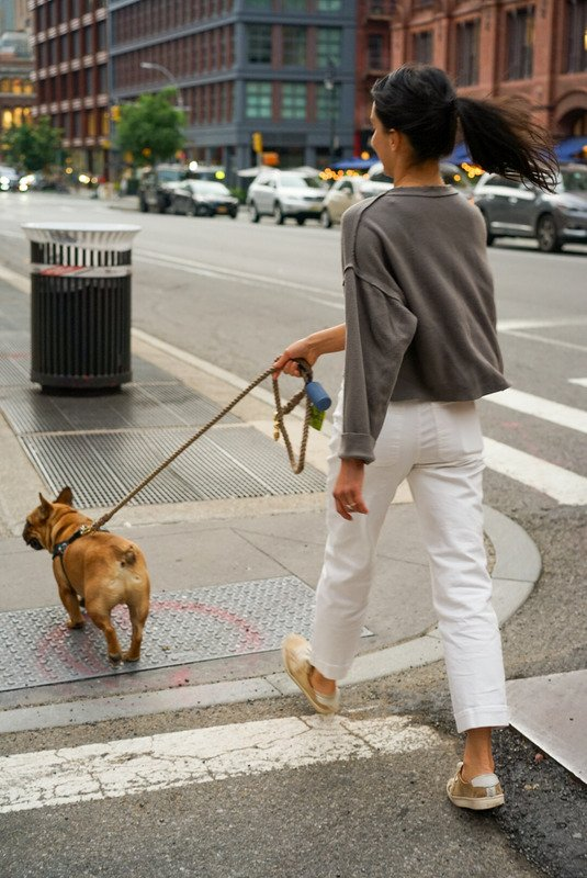 How to Be More Productive When you Work at Home - lady walking a dog on a city street