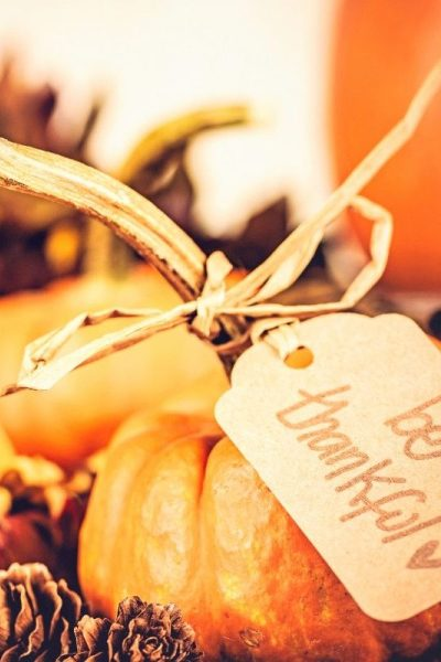 DIY Thanksgiving Decor Ideas under $10