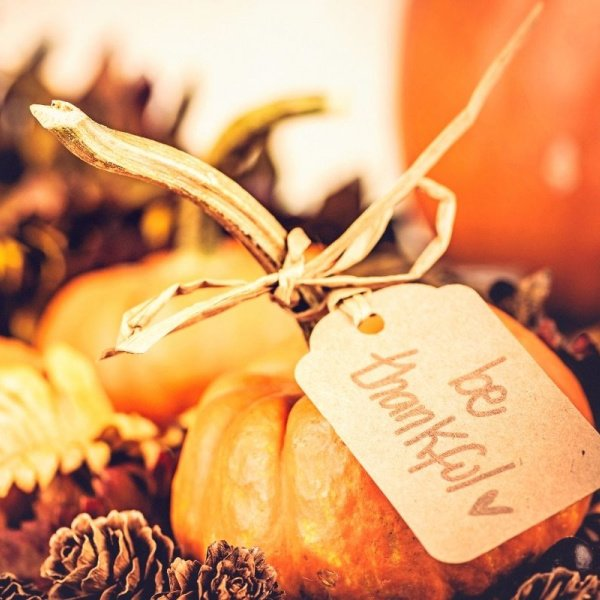 Pumpkins with Be Thankful tag