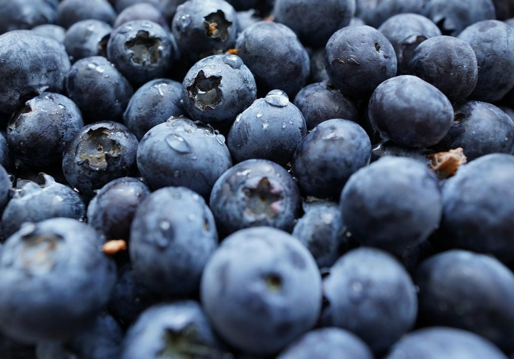 fresh blueberries - recipes that use blueberries