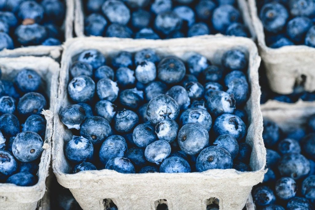 fresh blueberries in paper baskets
